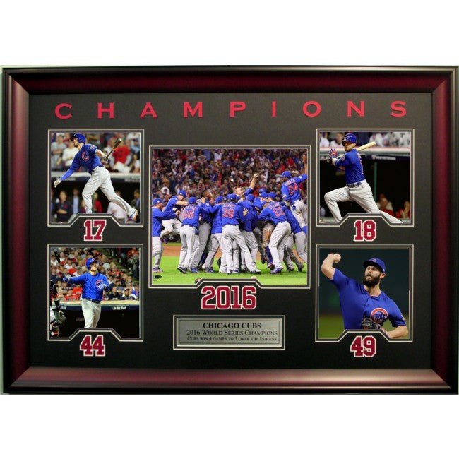Chicago Cubs 2016 World Series Photo Collage