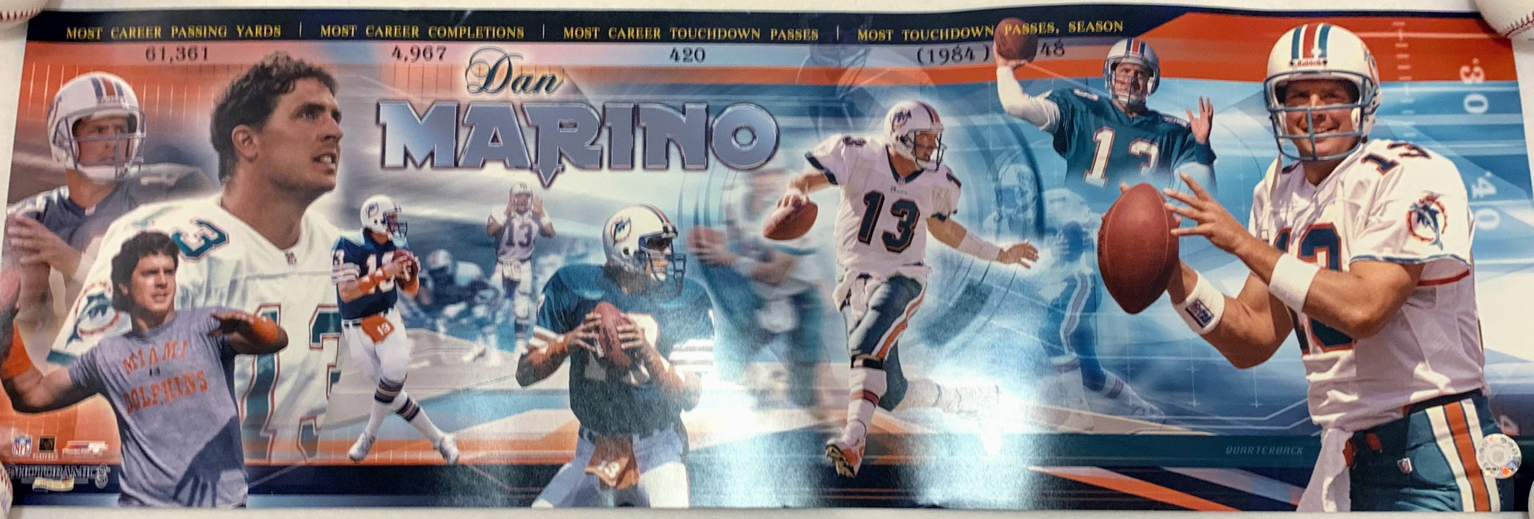 Dan Marino Panoramic - Latitude Sports Marketing