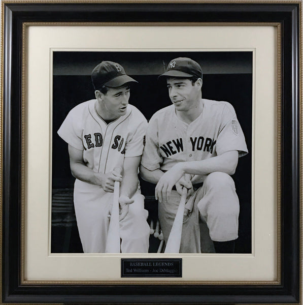 Joe DiMaggio & Ted Williams Framed 16x20 Photo