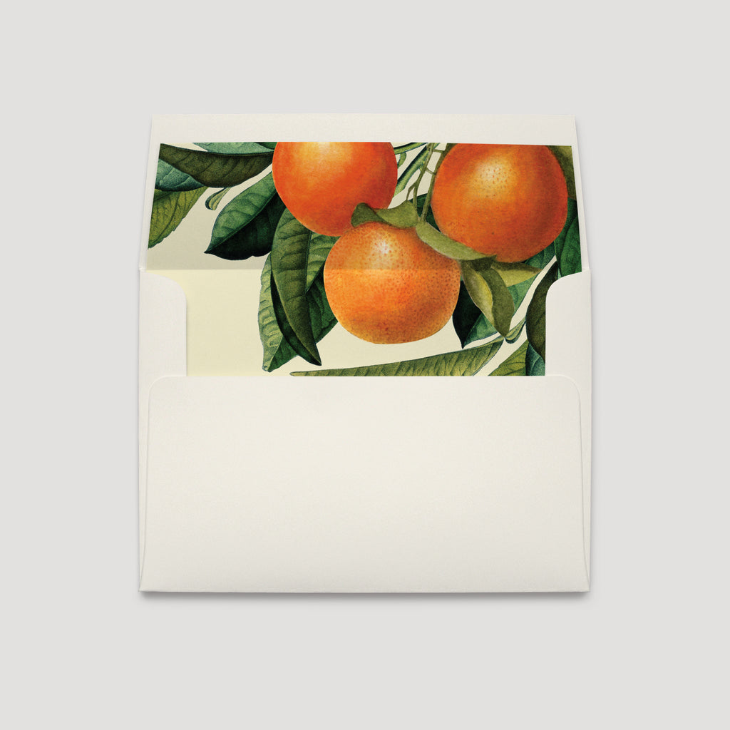 Citrus Orange Grove Florida Wedding Envelope Liner