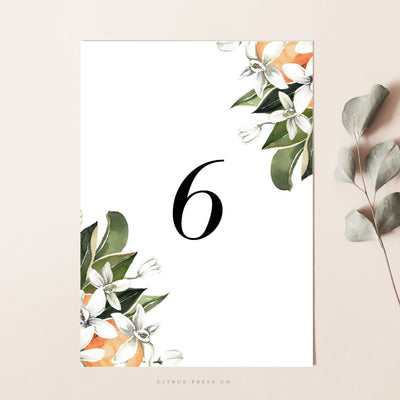 Citrus Oranges Wedding Reception Table Numbers