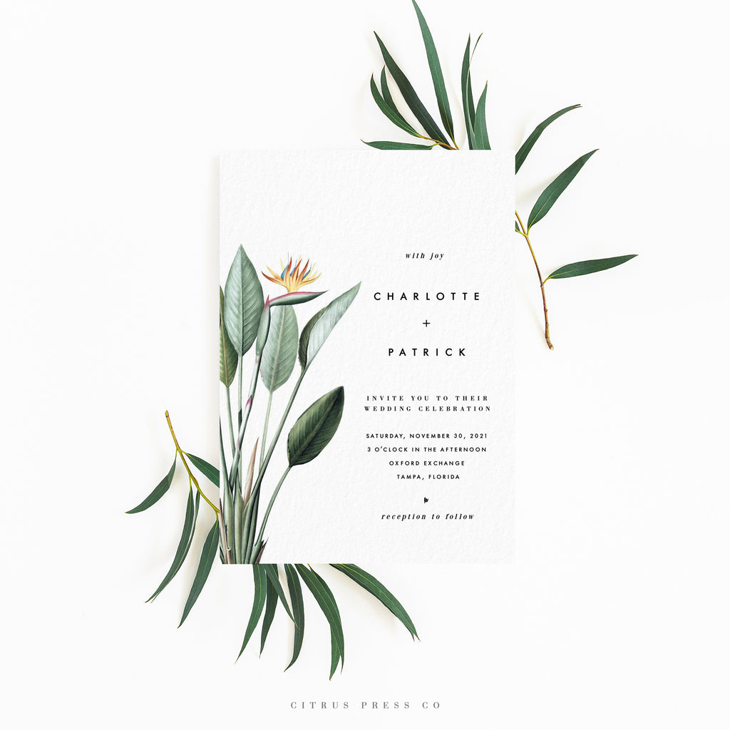 Minimalist Modern Simplistic Bird of Paradise wedding invitation suite DIY PDF Download