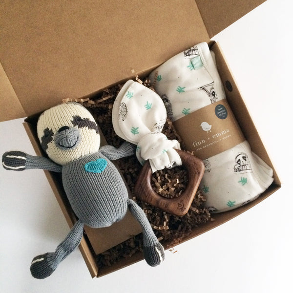 The Sloth Baby Box