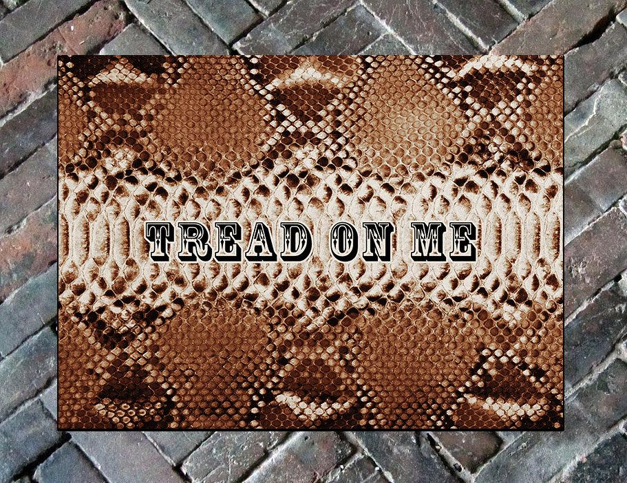 "Tread On Me Welcome Mat, 24""x 36""Doormat Floormat"