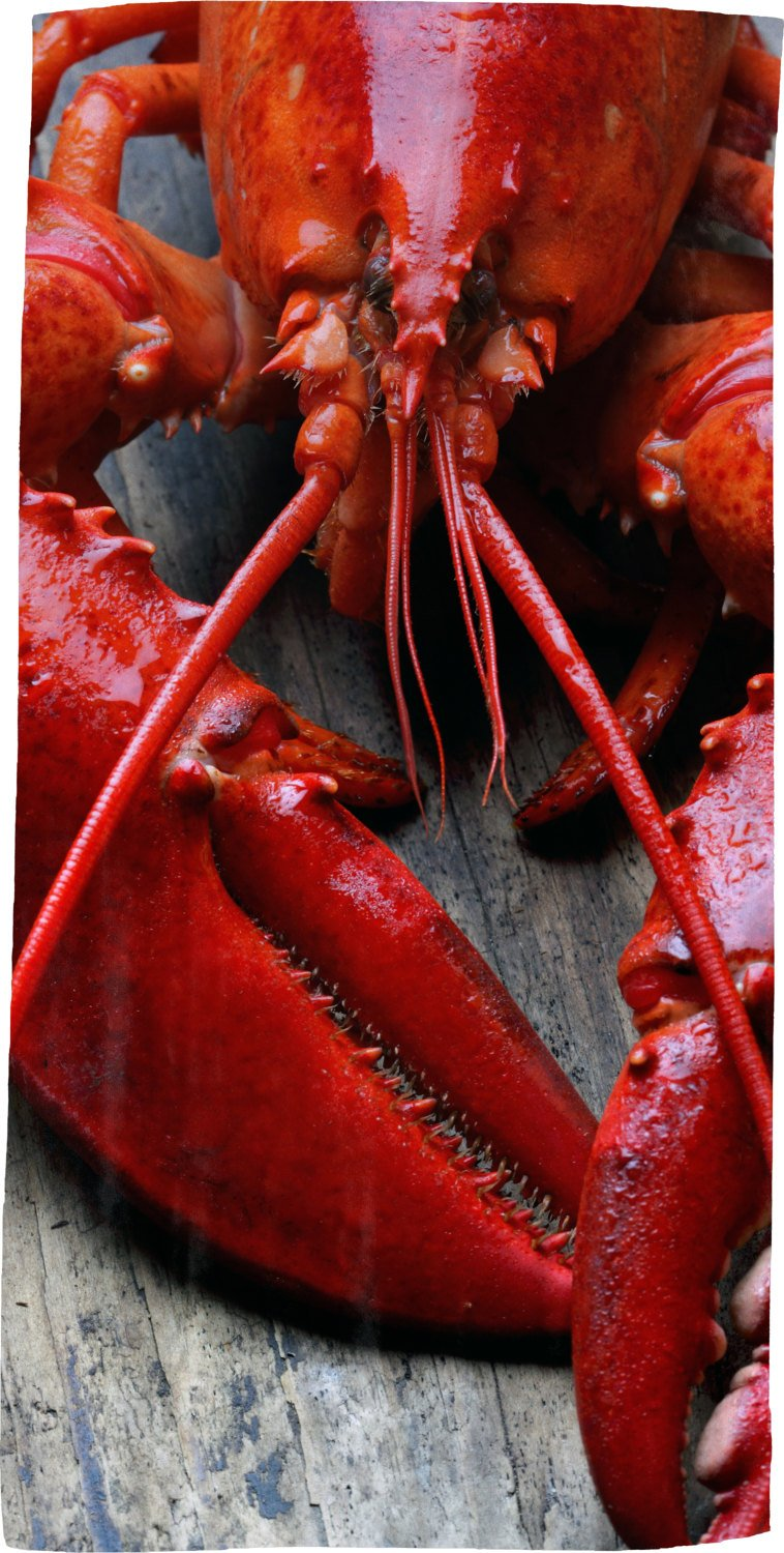 Lobster Red - Microfiber Beach Towel