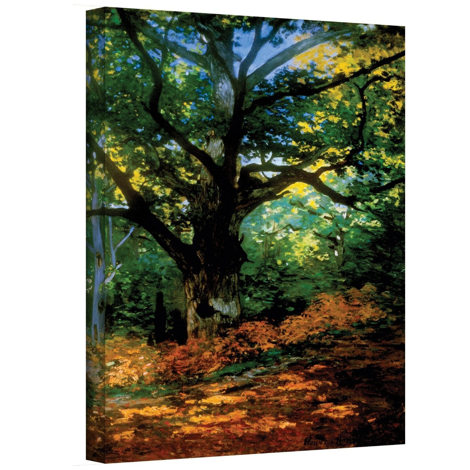 "Claude Monet, ""Bodmer Oak at Fountainbleau Forest"" 18"" x 24"" x 1.5"" Canvas Gallery Wrap Print"