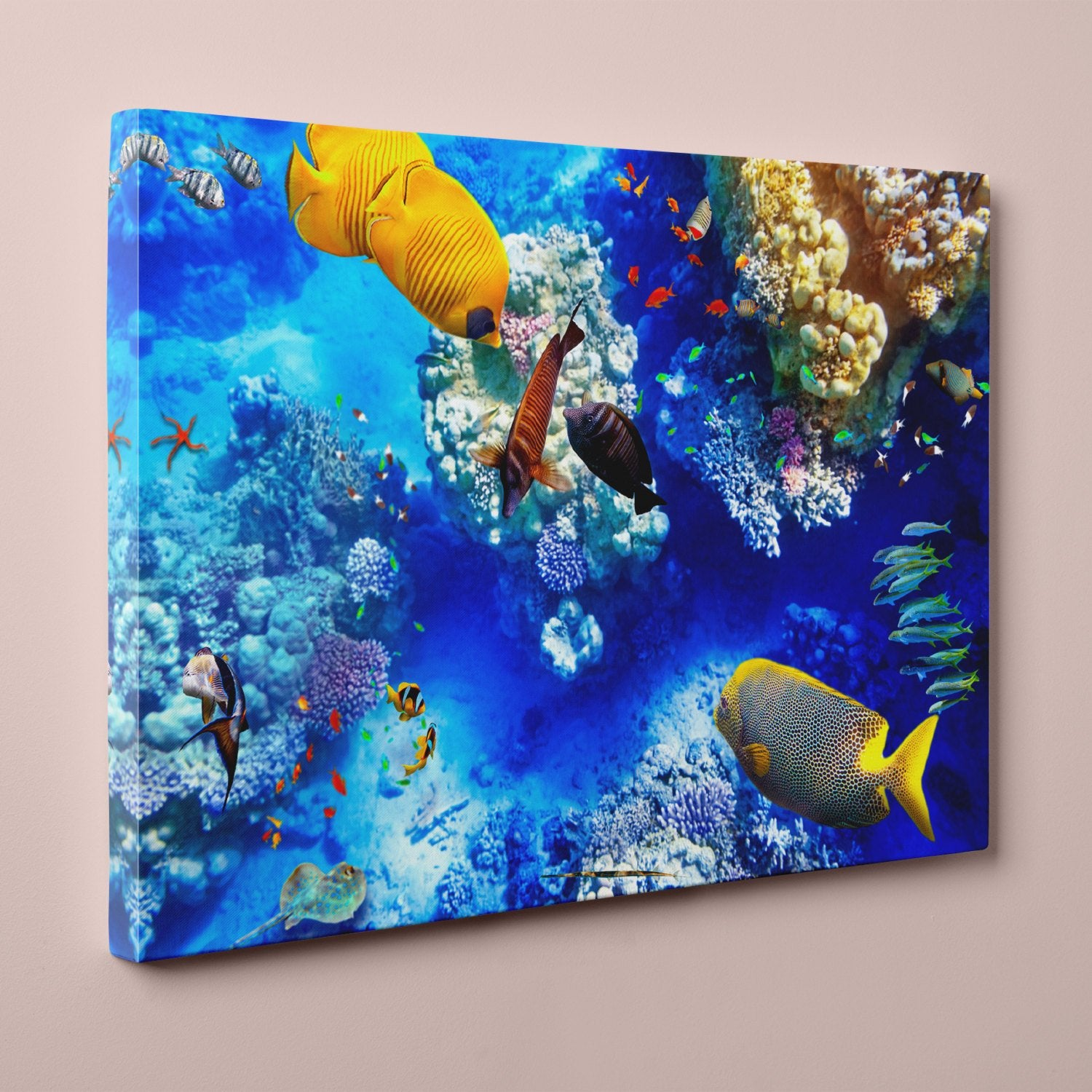 "Coral and Tropical Fish, Underwater Photo (12"" x 18"") - Canvas Wrap Print"