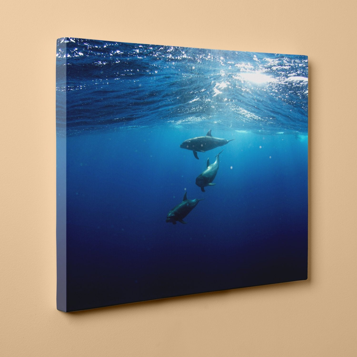 "Dolphins Diving Under (16"" x 20"") - Canvas Wrap Print"