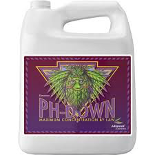 Advanced Nutrients Bud Ignitor 4L