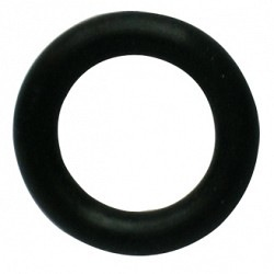 COREG INLET WASHER