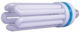 125 W Compact Fluorescent Bulb - Daylight