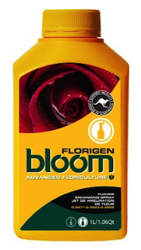 BLOOM FLORIGEN QT