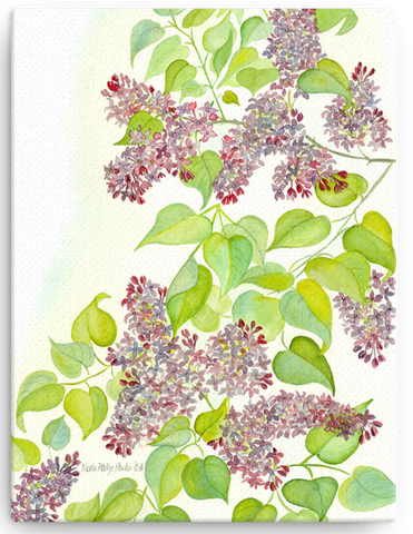 Lilac Blossom Print on Canvas - several sizes