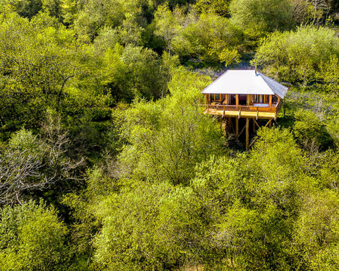 Dartmoor tree house