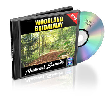 Woodland Bridalway (Audio)