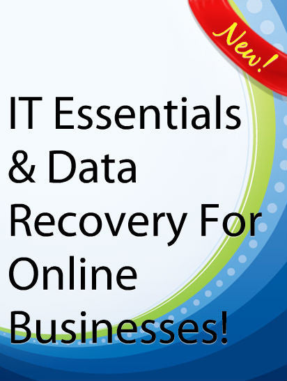 IT Essentials & Data Recovery For Online Businesses  PLR Ebook