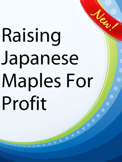 Raising Japanese Maples for Profit  PLR Ebook