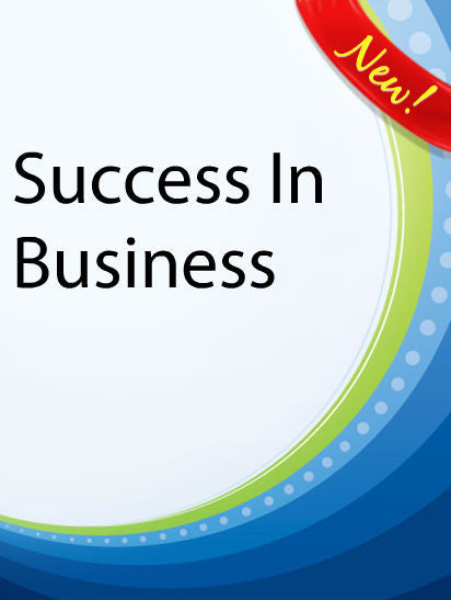 Success In Business  PLR Ebook