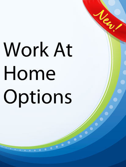 Work At Home Options  PLR Ebook