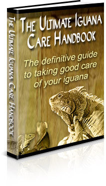 The Ultimate Iguana Care Handbook