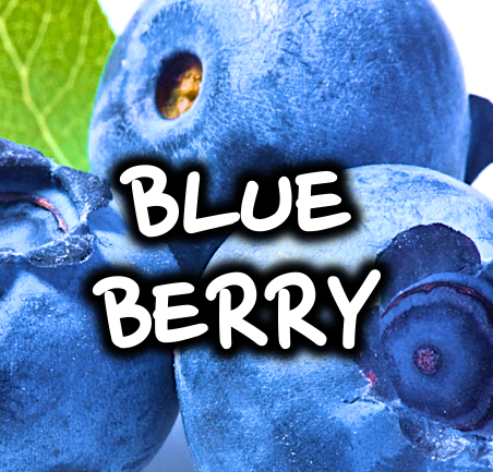 BLUEBERRY - 50/50 30ml
