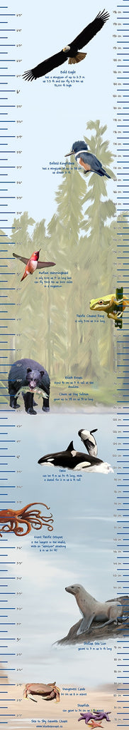 Blue Heron Art - Sea to Sky Growth Chart