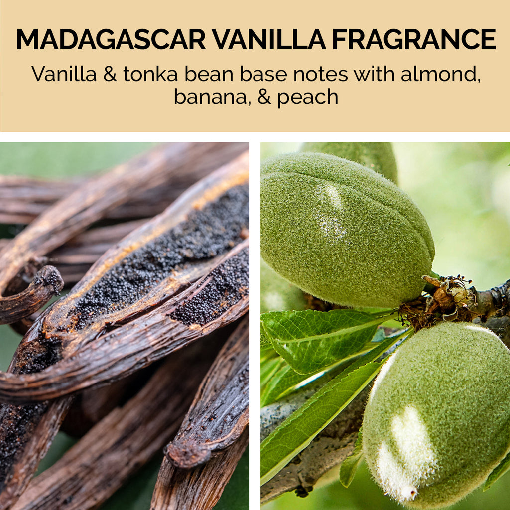 Contains vanilla and tonic bean base notes with almond, banana, and peach for a Madagascar vanilla fragrance.