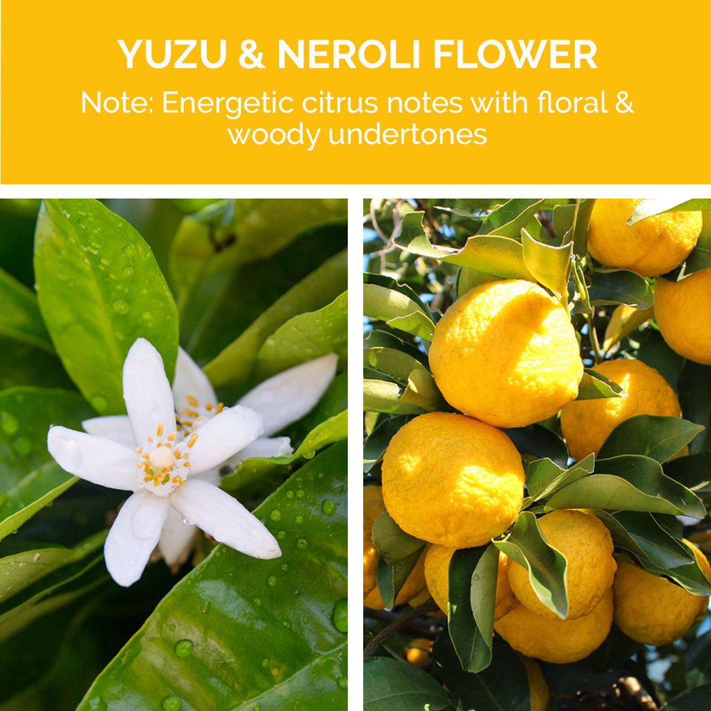 SuperPlump Volumizing Shampoo has a Neroli fragrance; energetic citrus notes with floral and woody undertones.