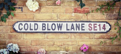 cold blow lane road sign