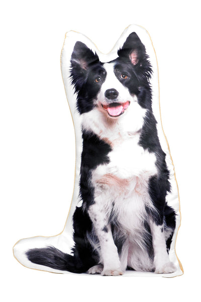 Border Collie Shaped Cushion