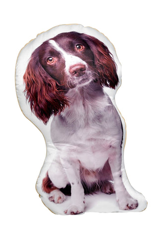Springer Spaniel (liver & white) Shaped Cushion