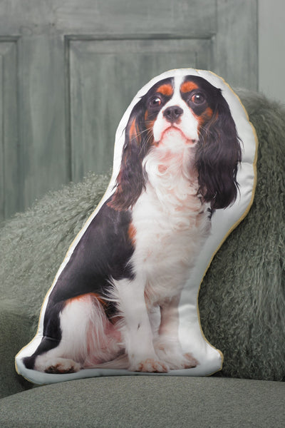 Cavalier King Charles (Tri colour) Shaped Cushion