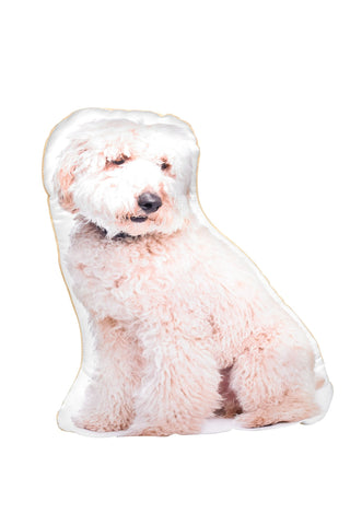 Cream Labradoodle Shaped Cushion