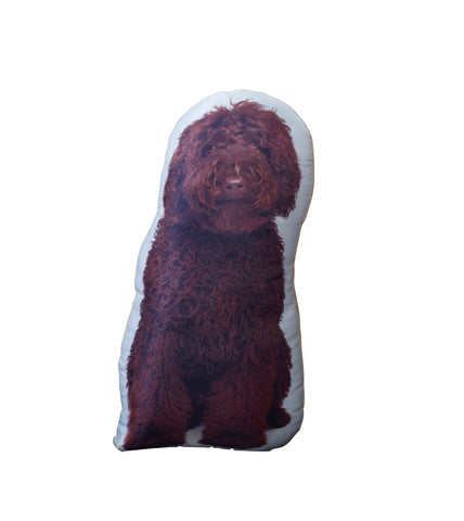 Chocolate Cockapoo Shaped Cushion