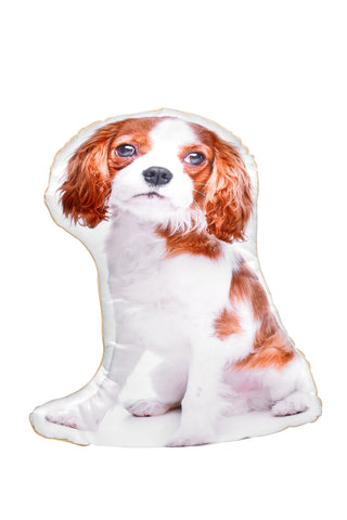 Blenheim Cavalier King Charles Spaniel Shaped Cushion