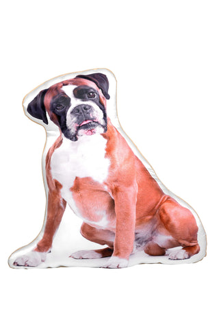 Boxer Shaped Cushion