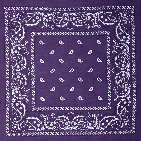 BANDANA | PURPLE PAISLEY