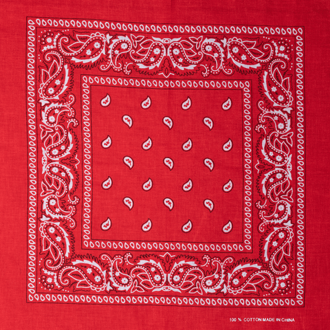 BANDANA | RED PAISLEY