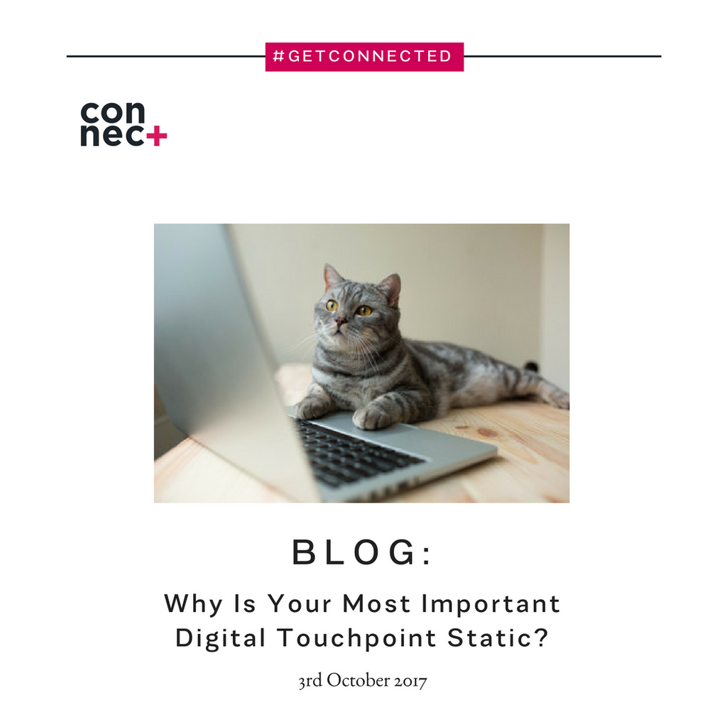 Why Is Your Most Important Digital Touchpoint Static?
