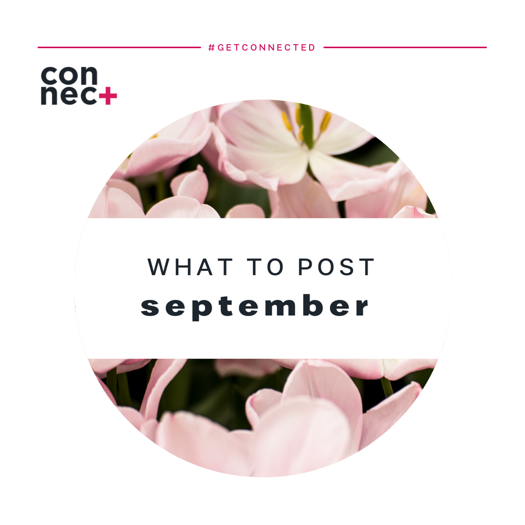 Ideas For Your September Content Calendar