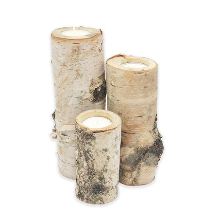 Birch Decor