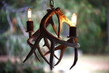 Antler Chandelier Hanging 2 Light