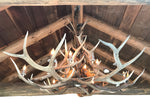 Elk Antler Chandelier Large