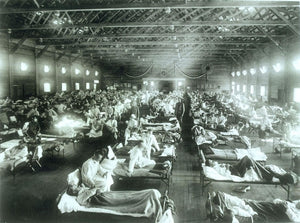 Influenza and WW1, and WW2