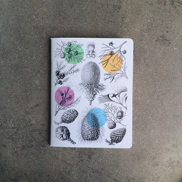 TINY THOUGHTS BOTANICAL NOTEBOOK