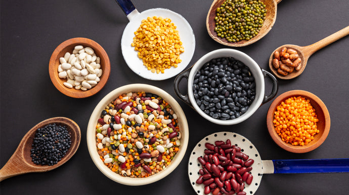 Pulses Rich in Protein