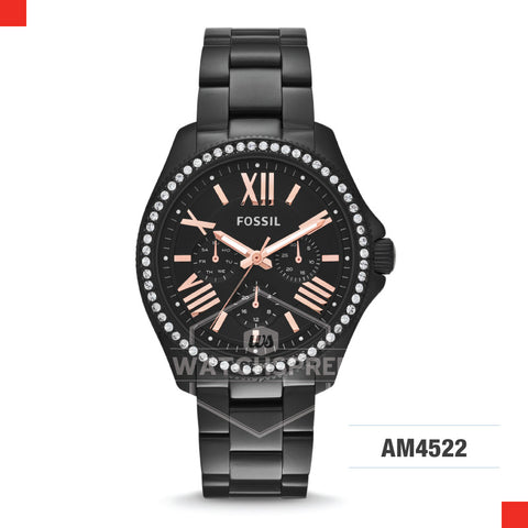 Fossil Ladies Cecile Multifunction Black Stainless Steel Strap Watch AM4522