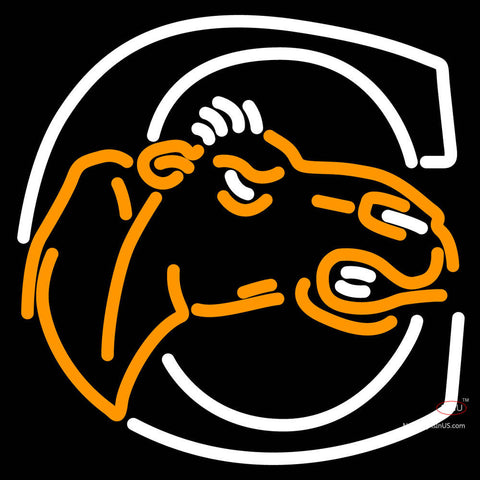 Campbell Fighting Camels Neon Sign x