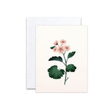 Botanical Germanium Scented Card