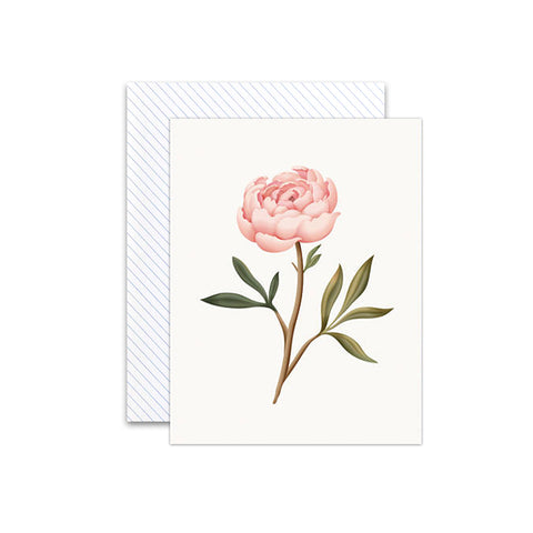 Botanical Peony Scented Card